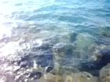 İskenderunda Balık Avı