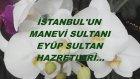 İstanbul'un Manevi Sultanı Eyüp Sultan Hazretleri...