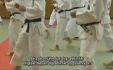 Japonya'da Eğitim