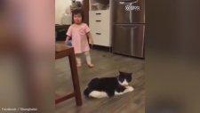 Kedinin Ufak Kıza Çelme Takması