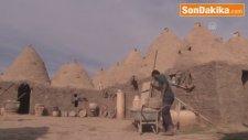 Harran'ın Konik Kubbeli Evlerine Kış Bakımı