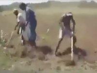 Toprak Ananın Irzına Geçmek