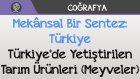 Mekânsal Bir Sentez: Türkiye - Türkiye'de Yetiştirilen Tarım Ürünleri (Meyveler)