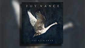 Foy Vance - The Wild Swans on the Lake