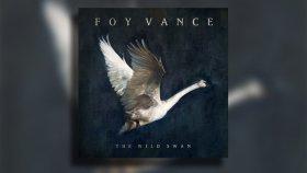 Foy Vance - Ziggy Looked Me in the Eye
