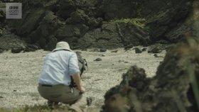 İguananın Yılanlardan Kaçtığı Görüntülerin Kamera Arkası
