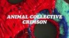 Animal Collective - Crimson | Yabancı Müzik