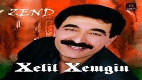 Xelil Xemgin - Hogır - HD - Ses