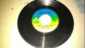 Nilgün Sultan-   Aşkını Kalbime Yazdım    45lik Plak- Nostalji Müzik