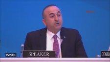 Dışişleri Bakanı Mevlüt Çavuşoğlu - Ermeni Vekile Cevap