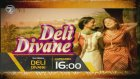 Deli Divane 127. Bölüm Fragmanı (30 Kasım Çarşamba)