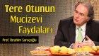 Tere Otunun Mucizevi Faydaları | Prof. İbrahim Saraçoğlu - Trt Diyanet
