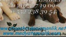 Ataşehir Temizlik Şirketi 0552 238 39 54