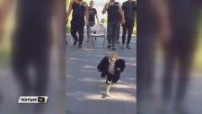 Çete Lideri Kabadayı Maymun
