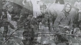 Mediha Şen Sancakoğlu - Beyaz Gul