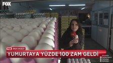 Yumurtaya Yüzde 100 Zam Gelmesi