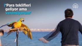 Papağan Cabbar'la 20 Yıllık Dostluk