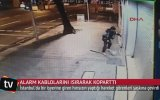 Kabloları Isırarak Alarmı Susturan Hırsız