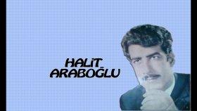 Halit Araboğlu - Sürünüp Gidiyorum