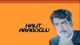 Halit Araboğlu - Aman Ben Bu Dünyaya Geldim Geleli