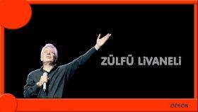 Zülfü Livaneli - Köşeyi Dönenlerin Şarkısı