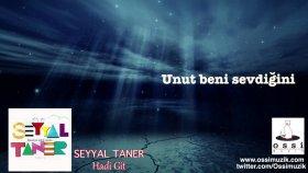 Seyyal Taner - Hadi Git