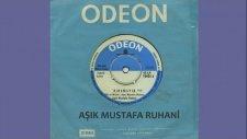 Aşık Mustafa Ruhani - Kınamayın (Official Audio)