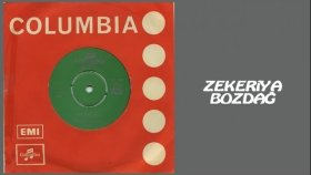 Zekeriya Bozdağ - Bülbül Havalanmış (Official Audio)