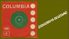 Zekeriya Bozdağ - Mor Koyun Meler Gelir (Official Audio)