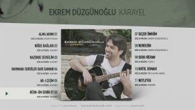 Ekrem Düzgünoğlu - Hüsn-ün Senin Ey