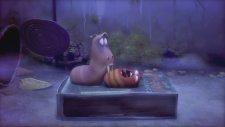 Larva - Halloween