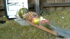 Saatte 241 Km Hızla Fırlatılan Bıçağın Ağır Çekim Görüntüleri İle Meyveler Üzerindeki Etkisi!