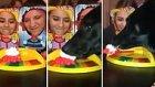 Surata Pasta Yapıştırma Oyunu Oynayan Sahiplerini Trolleyen Köpek