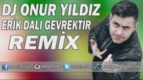 Dj Onur Yıldız - Erik Dalı Gevrektir (Remix)