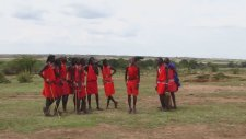 Masai Mara Kabilesinin İlginç 'Adumu Dansı'