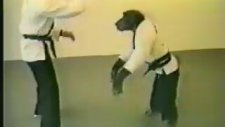 Taek Vondocu Maymun
