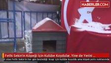 Fethi Sekin'in Köpeği İçin Kulübe Koydular Yine de Yerini Bırakmadı