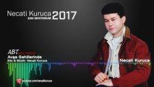 Necati Kuruca-Avşa Sahillerinde2017