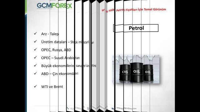 Yeni Yılda Petrol Fiyatları İçin Temel Görünüm / Sermet Doğan / 13.01.2017