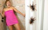 Acımasız Adamdan Kız Arkadaşa Banyoda Örümcek Şakası
