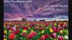 Üveys Zikrinde Yaşadıklarımız Bölüm 19