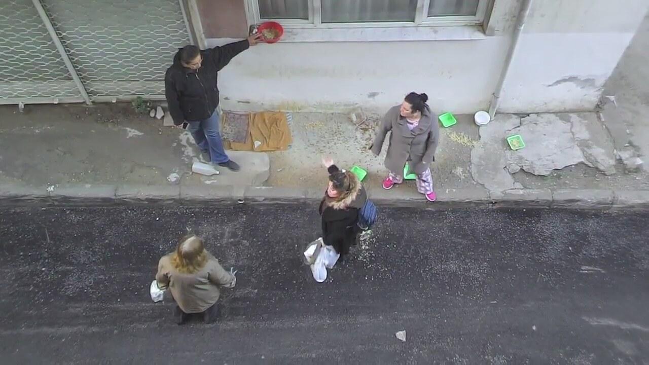 İzmir'de Sokak Hayvanları Yüzünden Çıkan Kavga