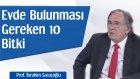 Evimizde Bulunması Gereken 10 Bitki | Prof. İbrahim Saraçoğlu - Trt Diyanet