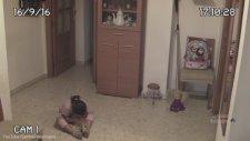 Evde Tek Başına (Paranormal Activite)
