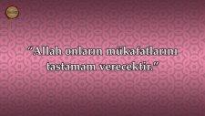Ali İmran Suresi - Mishary Rashid al Afasy | fussilet Kuran Merkezi
