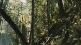 Eddie Vedder - Rise (Türkçe Çeviri)