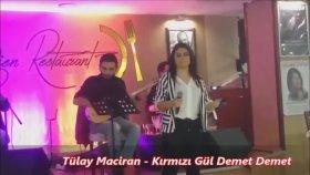 Tülay Maciran - Kırmızıgül Demet Demet