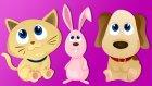 Hayvanlarla Sayı Saymayı Ogreniyoruz - 10 Küçük Köpekçik - Çocuklar İçin Sayılar