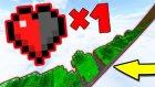 Minecraft'ta Yarım Kalple Hayatta Kalabilir Misin?