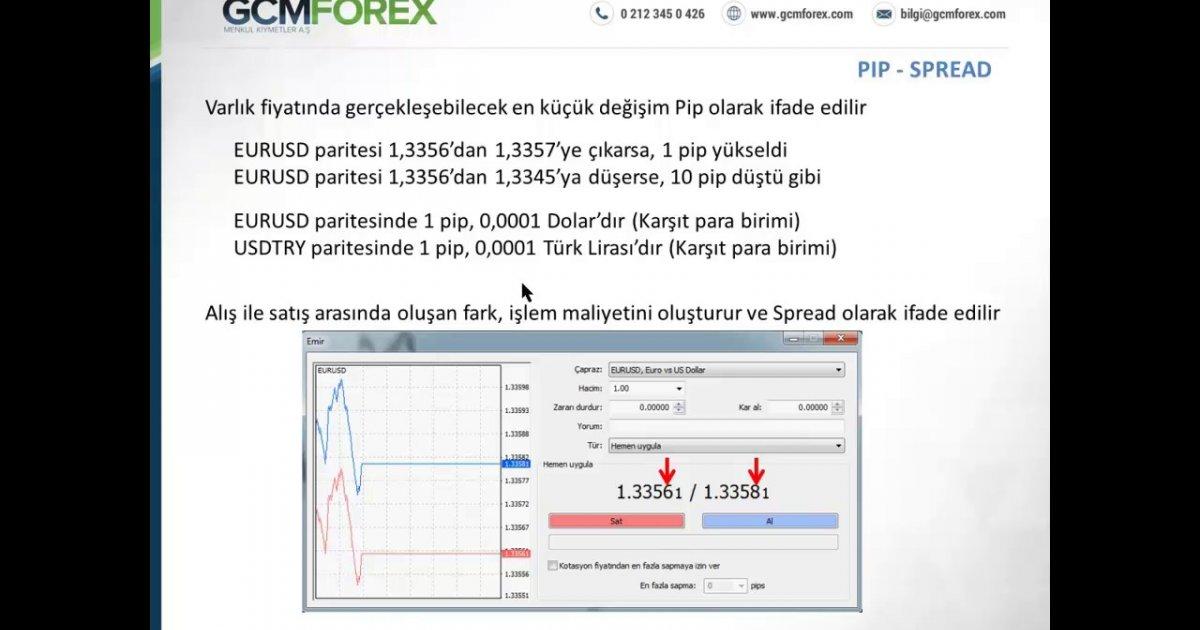 Forex 1 pip nedir
